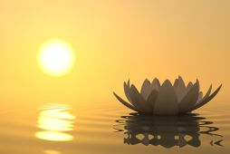 What-is-Mindfulness-Meditation